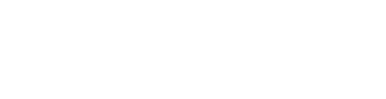 WordCamp NYC